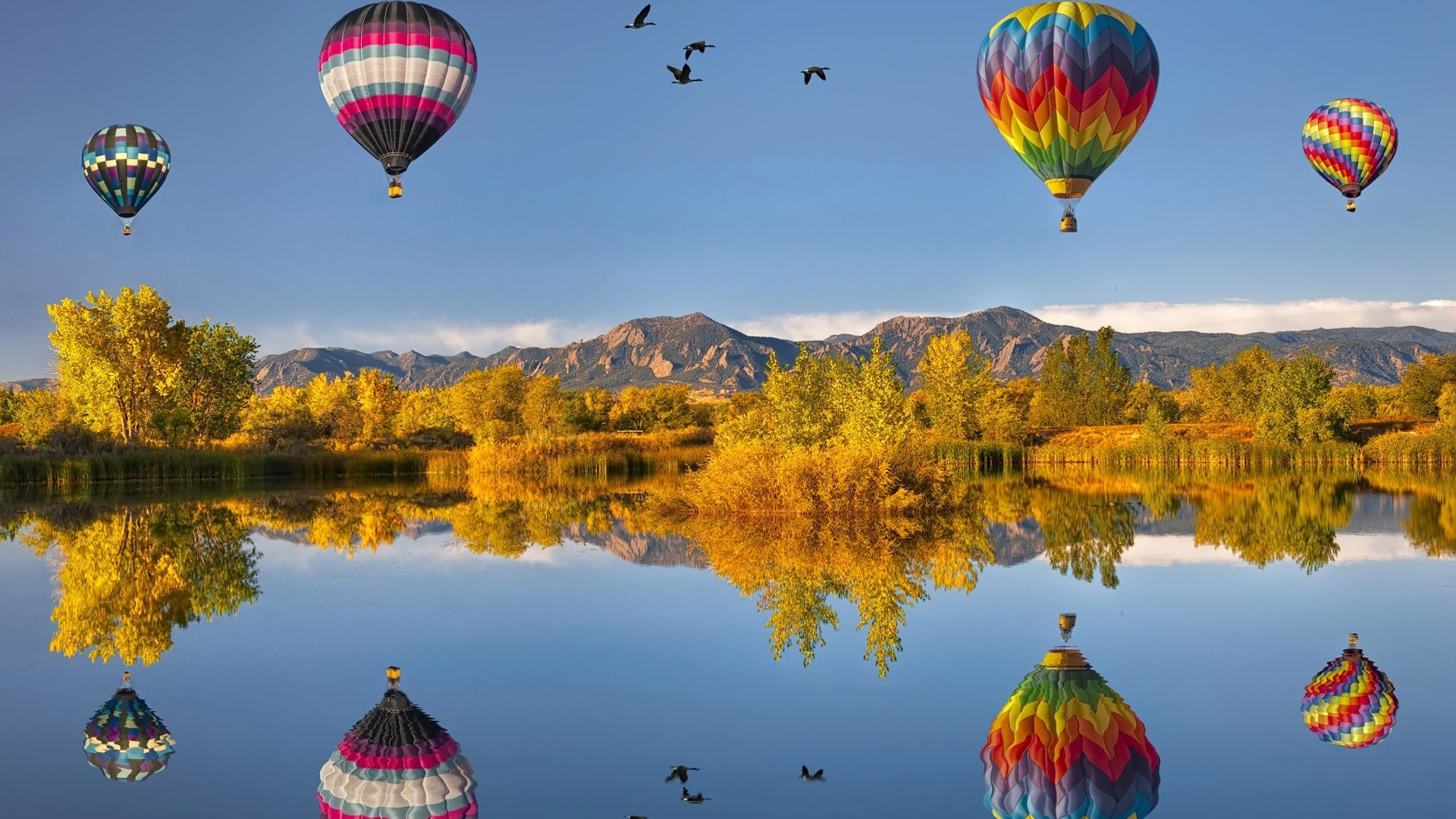 hot-air-balloons-balloon-hot-lake-nature-night-reflection